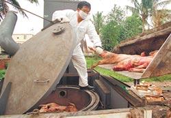 台將成非口蹄疫區 豬肉可望外銷