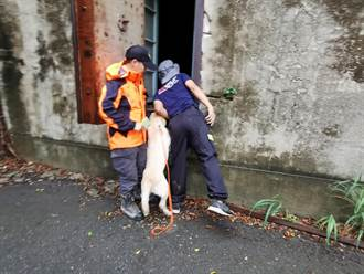 模擬瓦礫堆中救人 南市與新北搜救犬在歷史建築合訓