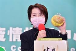 黃珊珊選台北市長? 黃暐瀚點名這五個可能對手