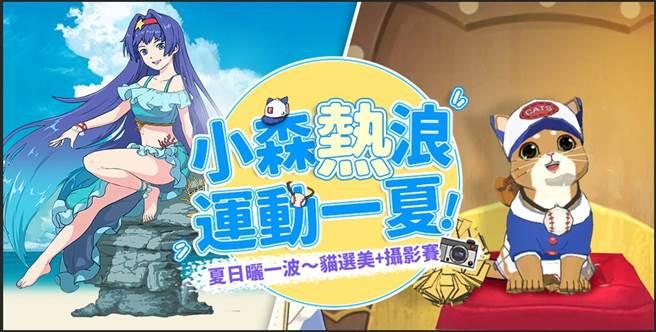《小森生活》第二波貓選美&攝影大賽於6月10日起至7月1日展開。(圖/江湖桔子提供)