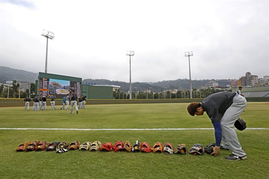 天母棒球場明年起將成為味全龍主場。(資料照/張鎧乙攝)