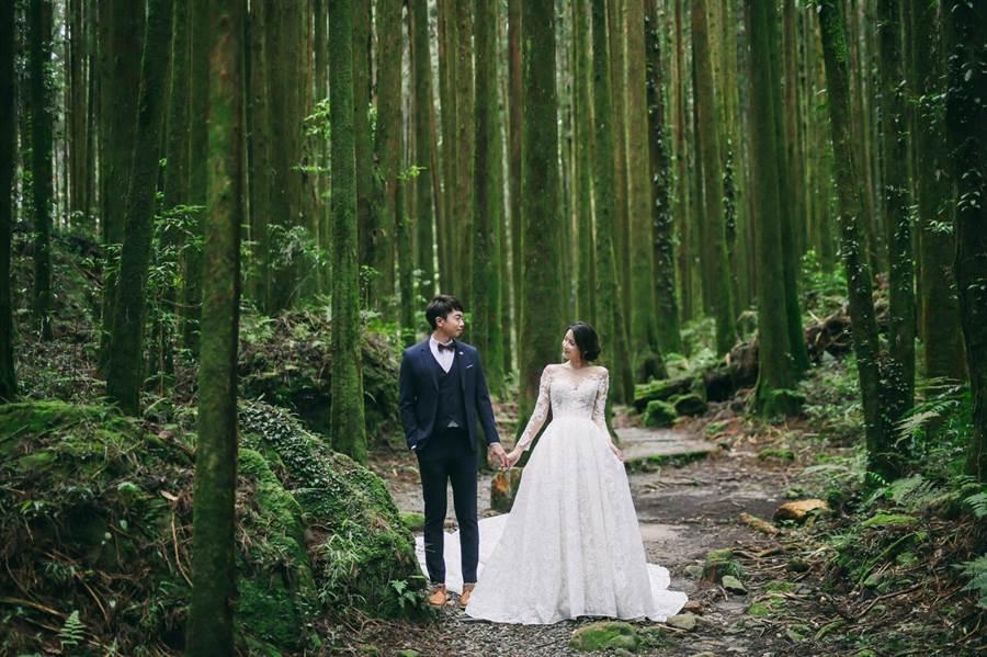 交通部觀光局今年再度舉辦阿里山神木下婚禮。(觀光局提供/陳祐誠傳真)