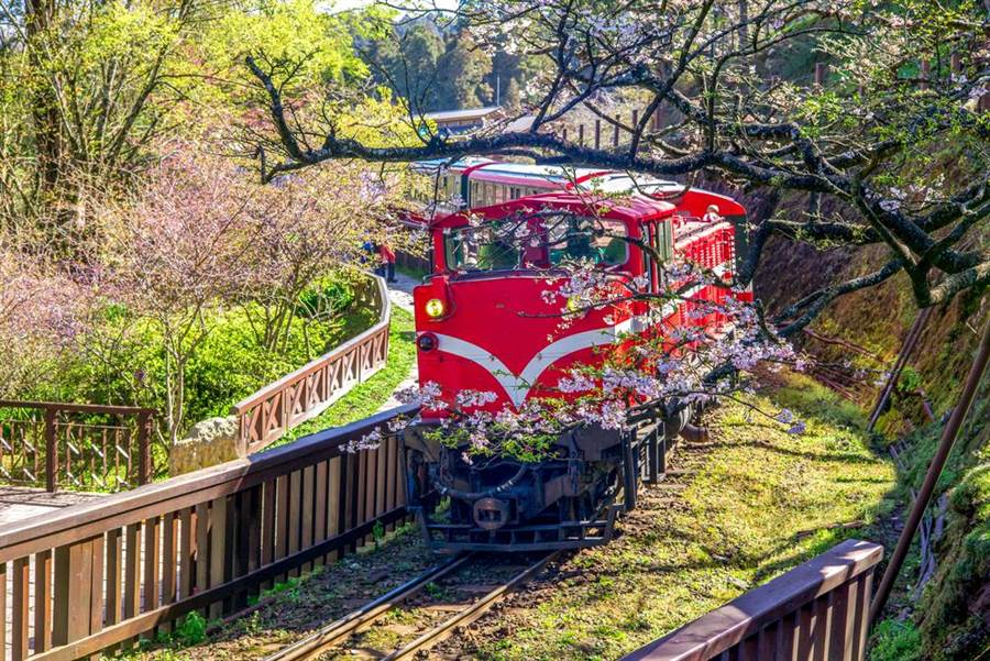 Airbnb:台灣國旅6月超越疫前水準 嘉義最熱門。(圖/Shutterstock)