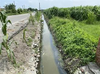 雲林農田水利會今年底起禁止畜牧場搭排廢水
