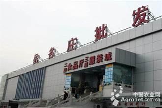 北京新發地爆發疫情 肉品分流岳各莊市場