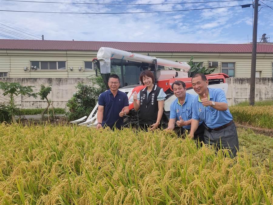 嘉南地區一期作稻穀進入盛收期,農糧署南區分署長姚志旺(左一)至後壁地區了解當地公糧經收情形。(農糧署提供/劉秀芬台南傳真)