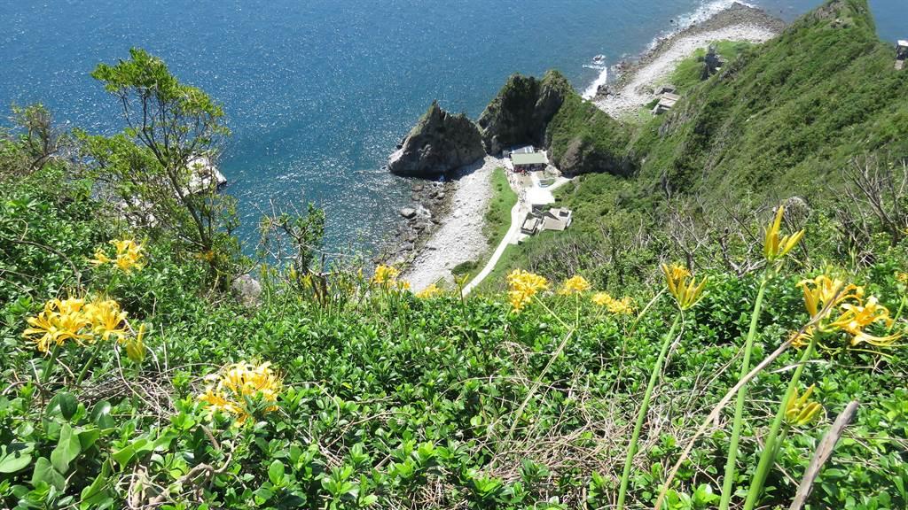 封島長達5年的基隆嶼,島上動植物自然生態豐富。(許家寧攝)