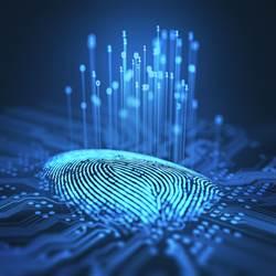 屏下指紋晶片 Q1出貨暢旺