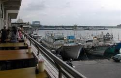 永續海洋資源 新竹市刺網、吻仔魚捕撈16日起進入禁漁期
