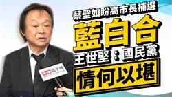 蔡壁如盼高市長補選「藍白合」 王世堅:國民黨情何以堪