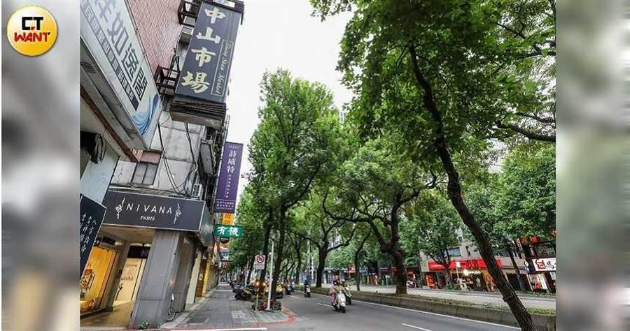 中山北路綠樹成蔭,曾經是外國元首來訪時的必經之路,從北車一直延伸到天母串聯多個繁華商圈。(圖/馬景平攝)