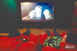 北京財政局退還已繳專項資金 助電影院度難關