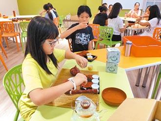 坪林免費營 吸收茶知識
