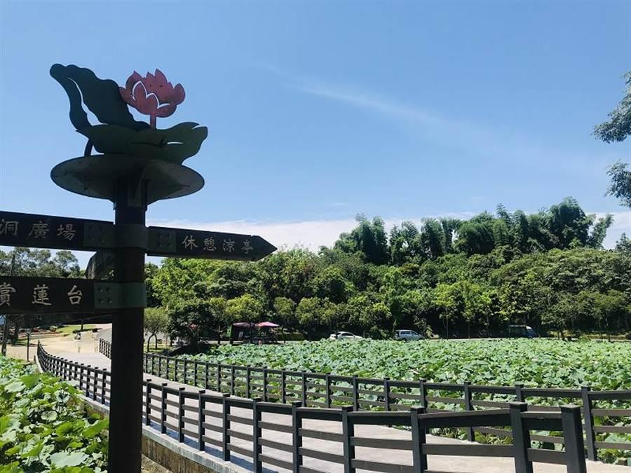 圖為可觀測日環食的白河蓮花公園。(台南市政府觀旅局提供/李宜杰台南傳真)