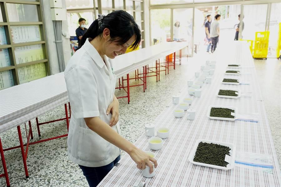 2020年梨山茶評鑑由茶業改良場魚池分場助理研究員簡靖華等擔任評審委員,根據外觀、水色與香氣滋味等3種項目進行評鑑。(王文吉攝)