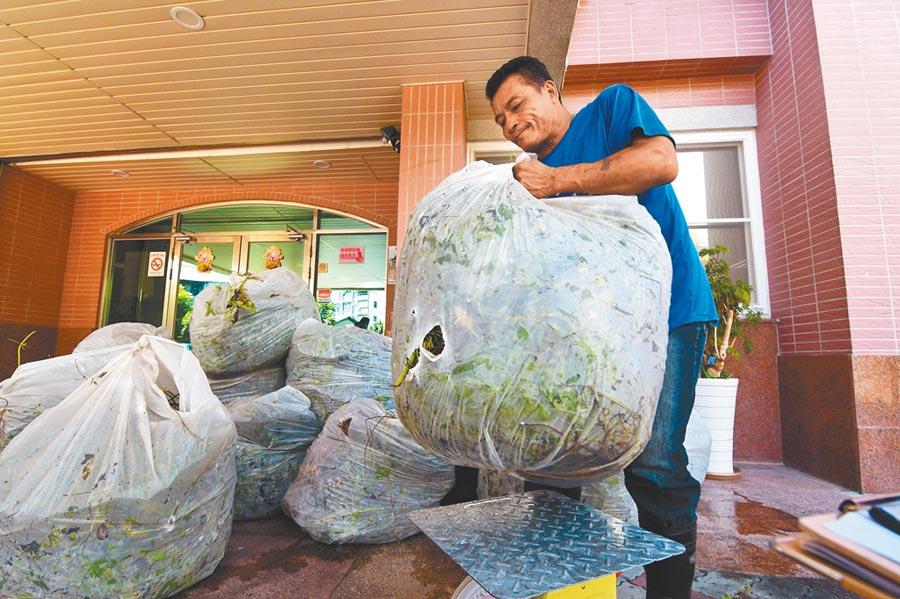 台東林管處即日起啟動小花蔓澤蘭移除收購作業,在4個工作站都可繳交。(莊哲權攝)