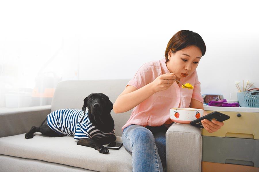 未婚獨居青年對陪伴的渴望,讓單身養寵物群體擴大。(新華社資料照片)