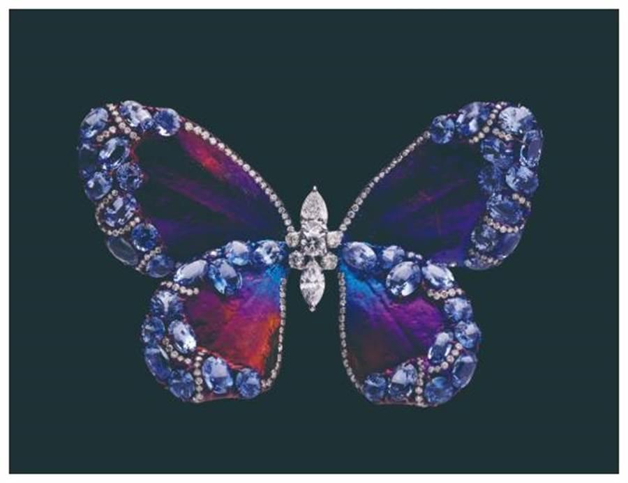 :AKACHEN珠寶作品《蝴蝶》胸針,以漸層色調的鈦金屬鑲嵌藍寶與白鑽。(AKACHEN提供)