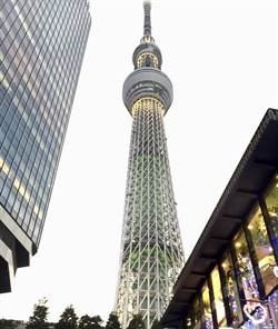 東京都單日確診人數又超過40人