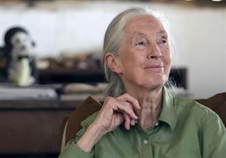 唐獎永續發展獎由珍古德獲得 可獲5000萬元獎金