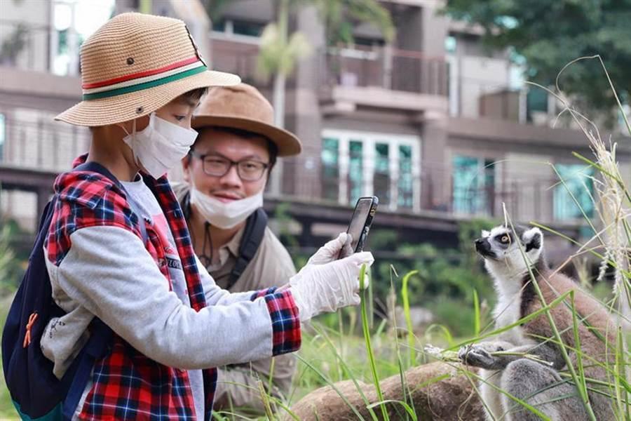 搶攻國旅復甦商機,六福莊推出生態攝影微營隊住房專案。(圖/六福旅遊集團)