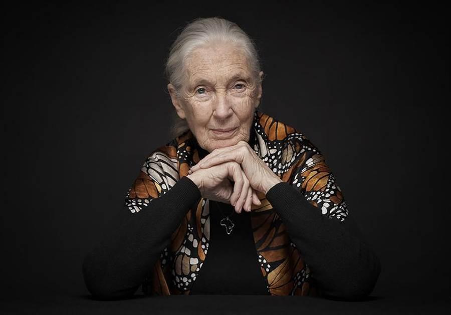 當今最重要靈長類動物學家之一珍古德(Jane Goodall)博士獲2020唐獎永續發展獎。(圖/唐獎教育基金會)