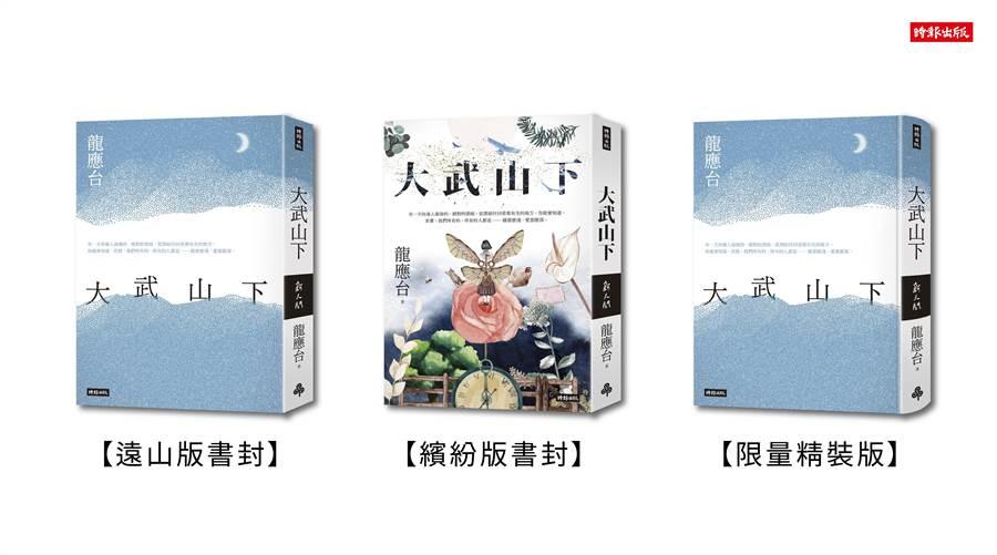 前文化部長龍應台七月將出版首部長篇小說《大武山下》。(時報出版提供)
