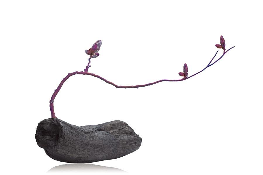 AKACHEN珠寶作品《木蘭》,以含苞待放的花朵詮釋東方禪意與美學,獲得V&A博物館的青睞。(AKACHEN提供)
