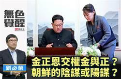 無色覺醒》 劉必榮:金正恩交權金與正?朝鮮的陰謀或陽謀?
