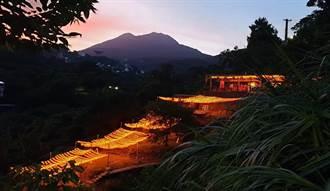陽明山越夜越美麗 驚現「燈」天龍梯!
