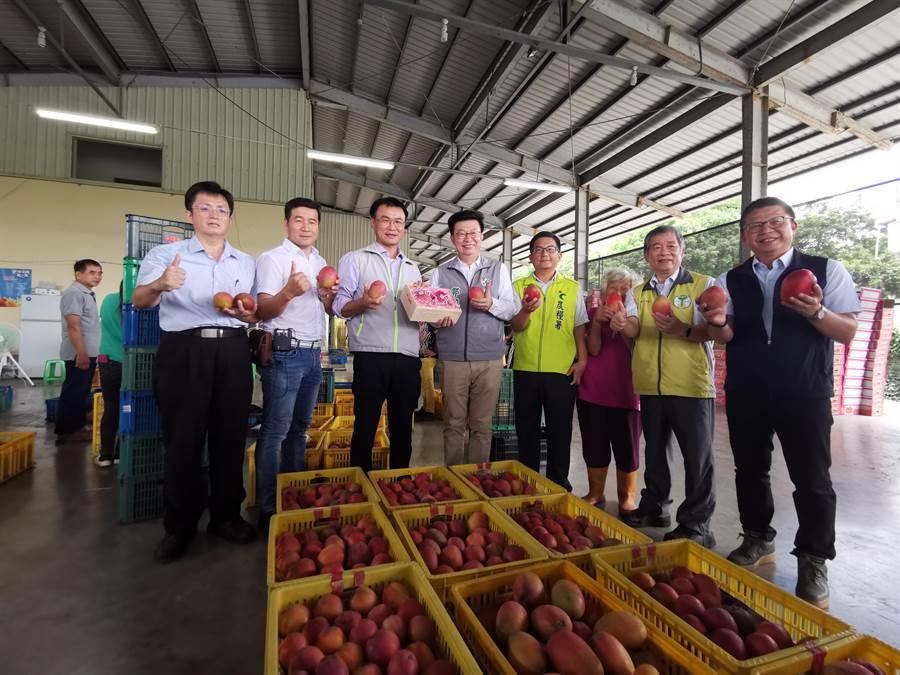 農委會主委陳吉仲(左三)至台南市南化區農會關心芒果產銷狀況。(劉秀芬攝)
