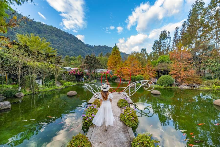 南投台一休閒農場,號稱最美麗的花卉森林城堡,有七大主題生態園區。(台一休閒農場提供/黃國峰南投傳真)