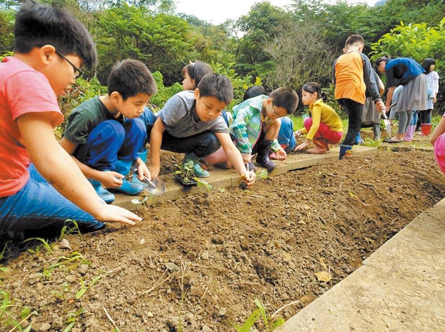 實驗教育學校蓬勃發展,學生人數已近1.8萬。圖為基隆市瑪陵國小師生體驗農事。(基隆市政府提供)