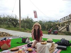 東勢梨果季野餐日登場 夢幻梨園讓網美超好拍
