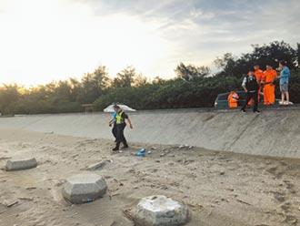 虐死女嬰埋沙灘 狠父母遭收押