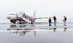 睽違70天!樂桃航空日本國內航線全面再開