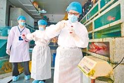 冷鏈運輸藏危機 恐助病毒傳播