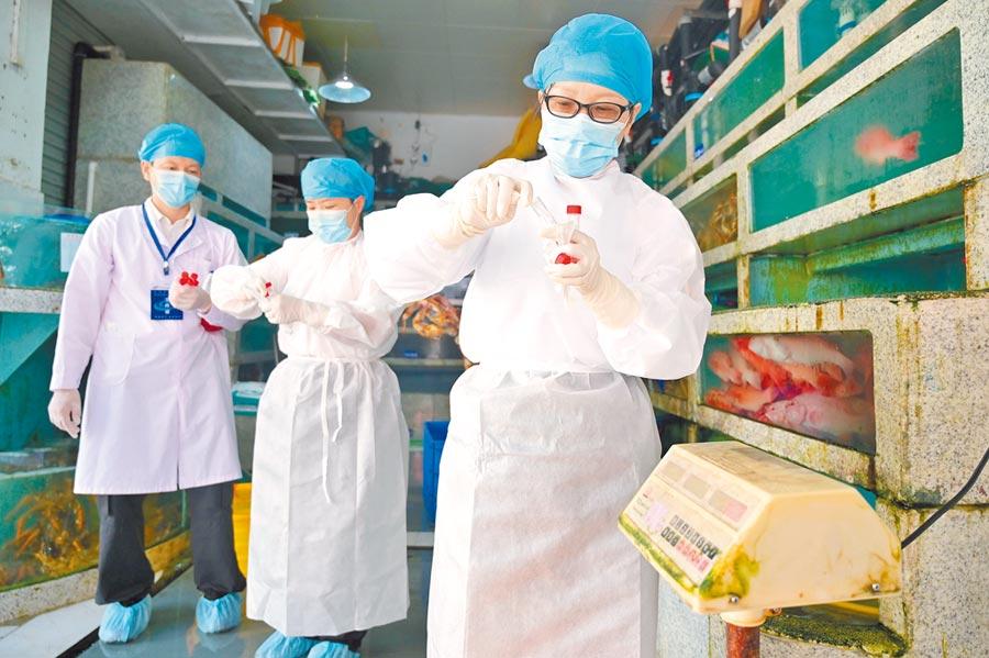6月19日,廣西南寧一海鮮批發交易市場內,疾控中心疫情監測人員對海產銷售店舖進行環境採樣檢測。(中新社)