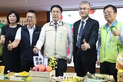外銷訂單佳 台南國際芒果節開跑