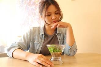 十三行博物館推全新文創商品 現代版「人面陶罐」養植物不是夢