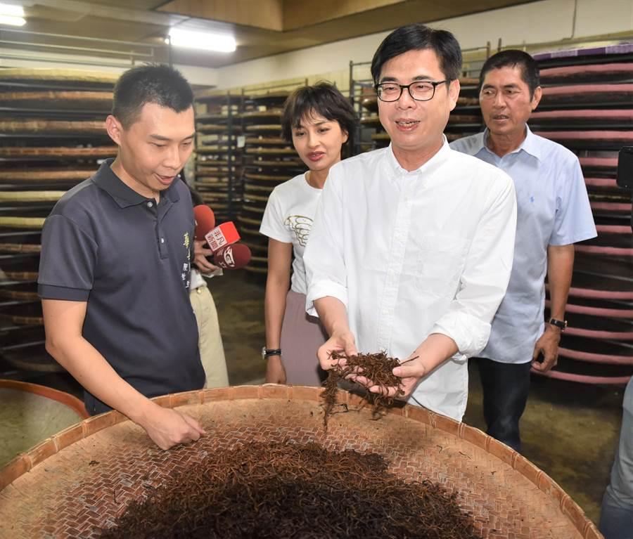 前行政院副院長陳其邁23日(前右)到高雄市六龜區華興茶莊,觀摩製作紅茶的過程。(林瑞益攝)