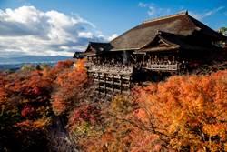 京之夏:貴船神社與七夕