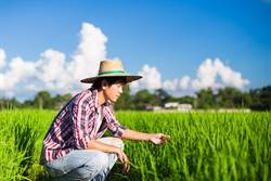 務農太苦年輕人不願做?農夫揭殘酷主因