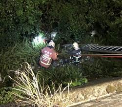 18歲女跳下烘爐地山坡 緊急送往雙和醫院