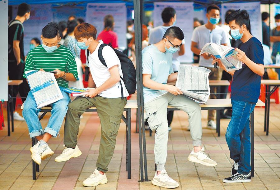 海口「戰疫情·促就業」招聘會,求職者在查看招聘訊息。(新華社資料照片)