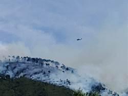 武陵農場對面火燒山 一夜延燒2公頃