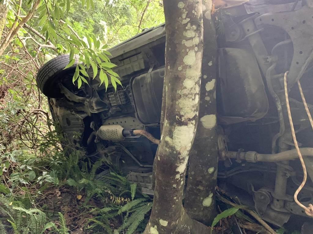 司馬庫斯部落聯絡道傳翻車,卡在樹上待援。(翻攝照片/莊旻靜新竹傳真)