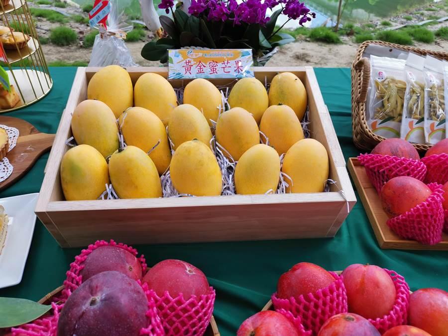 台南國際芒果節「大內芒果芒一夏」活動7月5日將於大內青果集貨場展開,現場有各式芒果展售,還有少見的「黃金蜜芒果」。(劉秀芬攝)