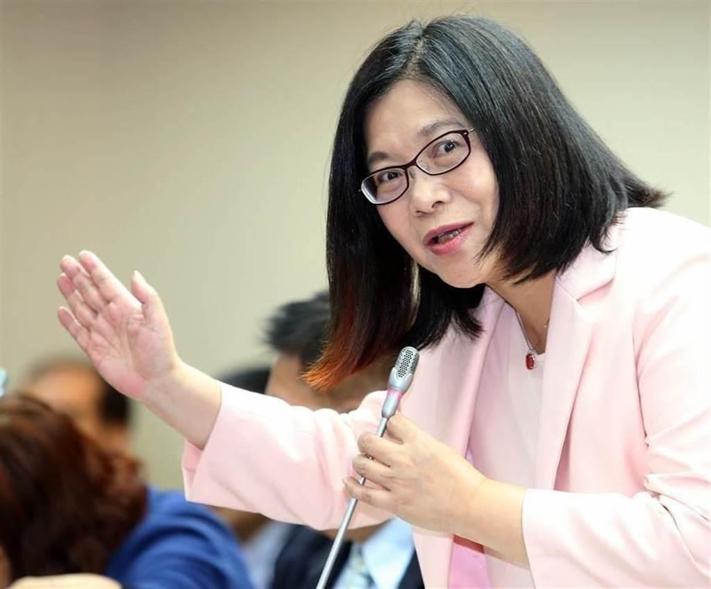 民進黨立委管碧玲。(圖/本報系資料照片,王英豪攝)