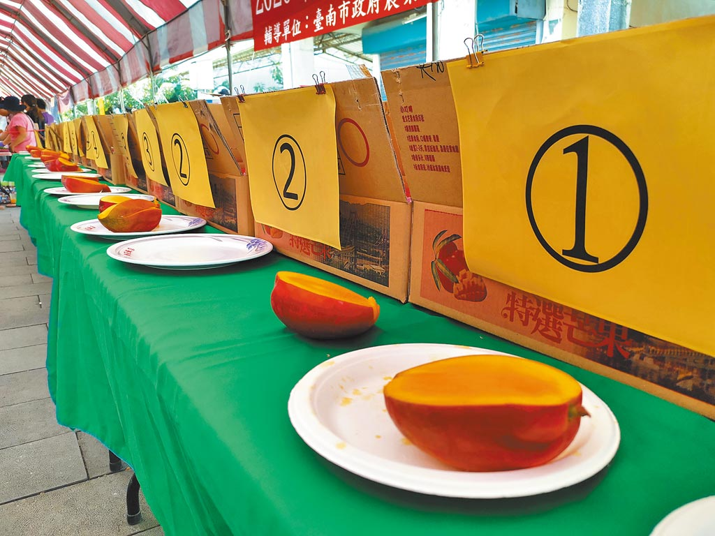 台南楠西區是台南芒果最大產區,為推廣楠西芒果知名度,舉辦「愛文王芒果評鑑比賽」。(劉秀芬攝)